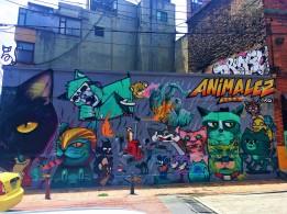 44 aBlack Cat Animalez org (3)