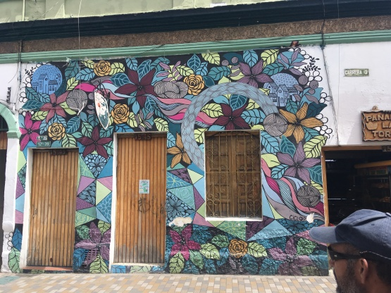 6 Flower Wall Collector from Argentina
