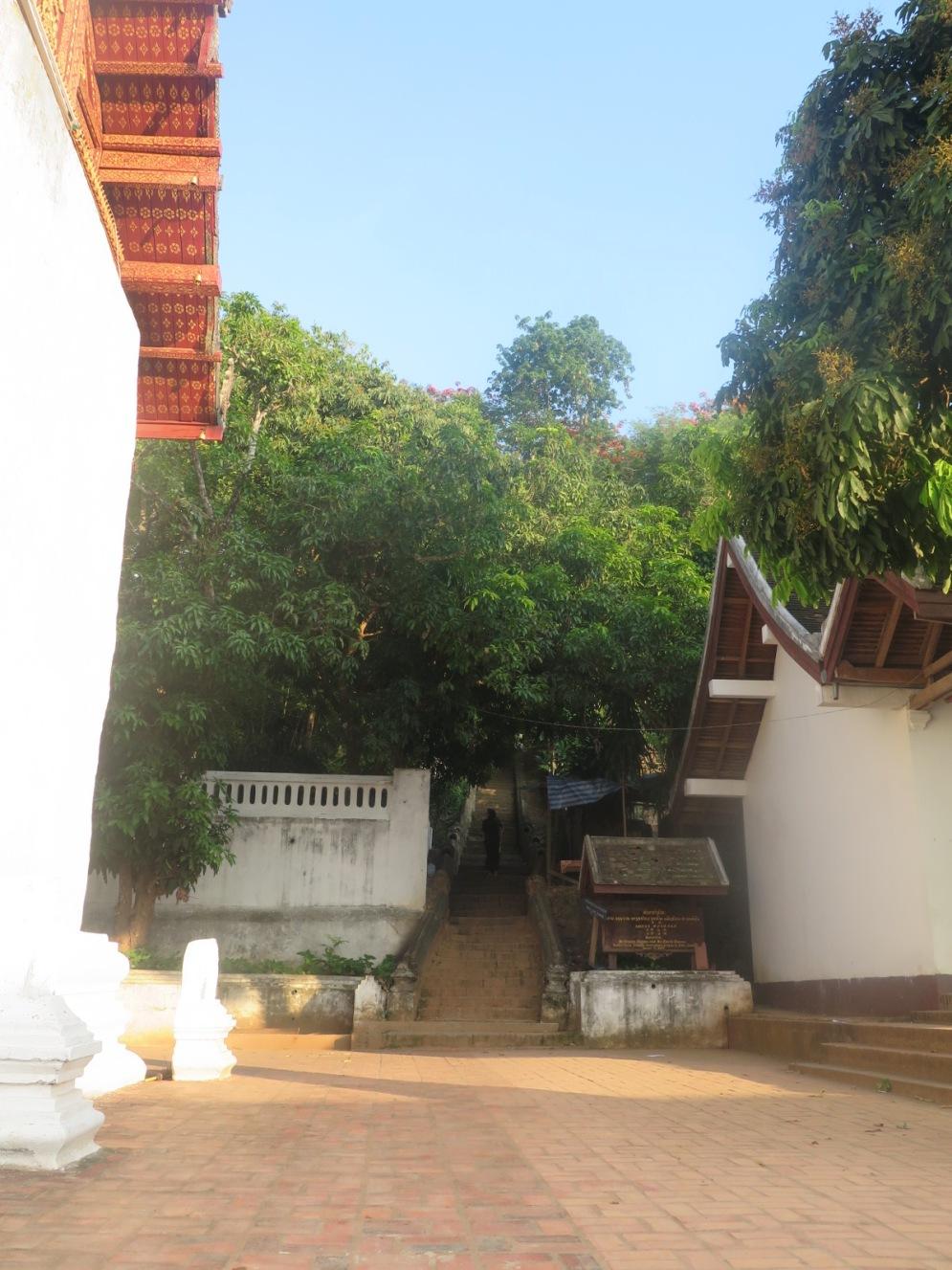 1Day-Mount Phousi (7)