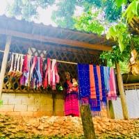DOI INTHANON - El punto más alto de Tailandia: ¡imprescindible excursión desde Chiang Mai