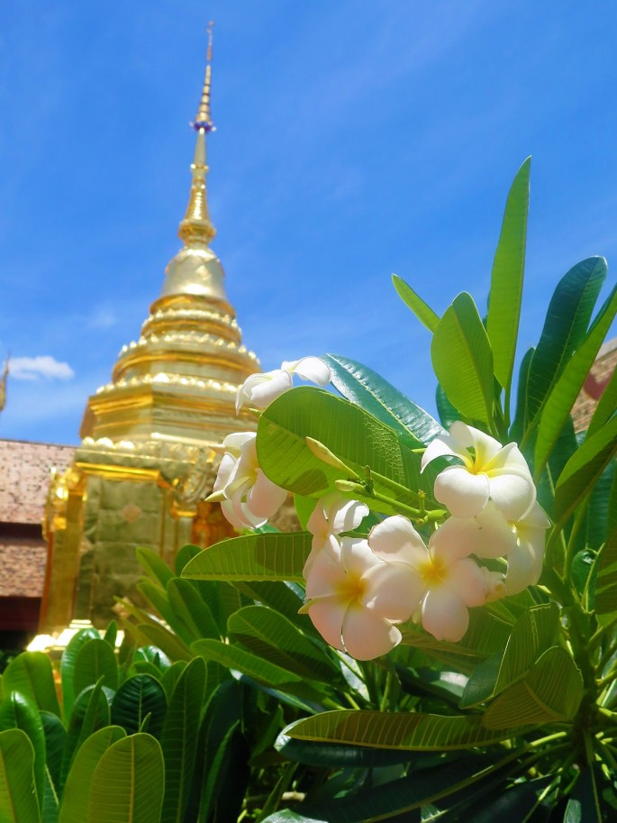 Wat Phra Sing & Wihan Lai Kham Jenny Rojas (2)
