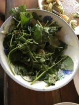 Pak Ou Cave + Lunch (6)