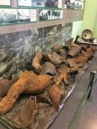 2 -War Remnants Museum - Jennyskyisthelimit - HoiPhong Wavefront Exhibit (10)