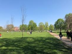 Hyde Park - Jennyskyisthelimit (2)