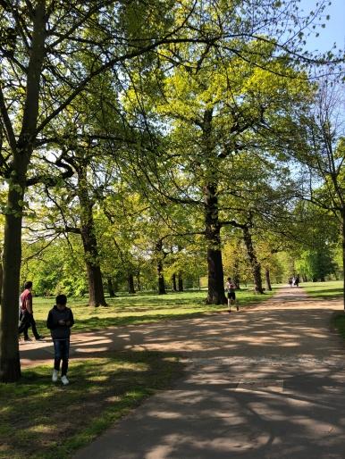 Hyde Park - Jennyskyisthelimit (4)