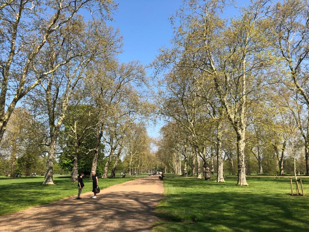 Hyde Park - Jennyskyisthelimit (5)