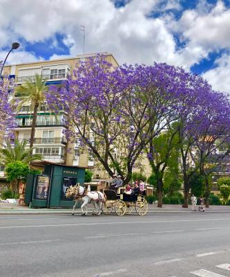 Jenny Rojas - Streets at Sevilla- Feria de Abril Sevilla Espana May 19 (54)
