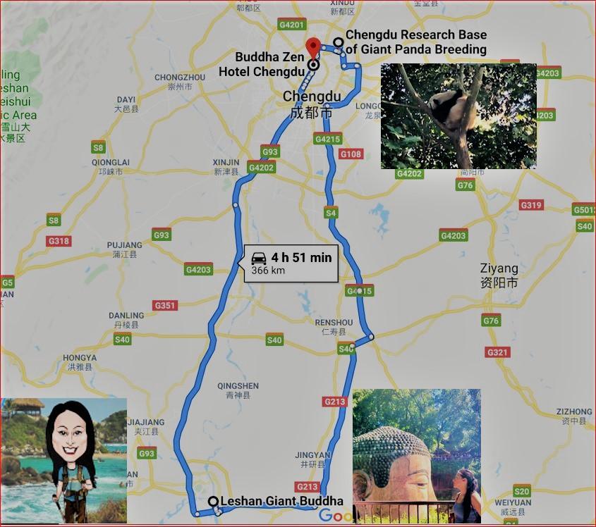 China Day 7 - Giant Panda Research Centre Chengdu & Leshan Giant Budda