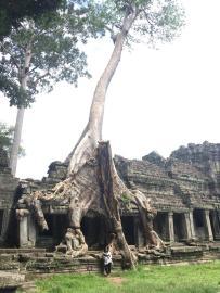 1 Angkor Complex - Preah Khan by Jenny Rojas (24)