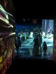 2- teamLab - Borderless World- Universe of Water Particless on a Rock - By Jenny Rojas (2)