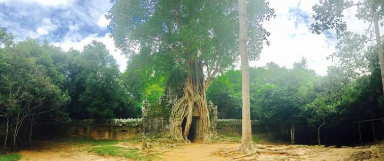 7- Angkor Complex - Eastern gopura with strangler fig at Ta Som Temple - by Jenny Rojas (1)