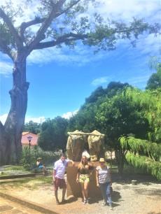 escultura de una cruz y bueyes arando la tierra